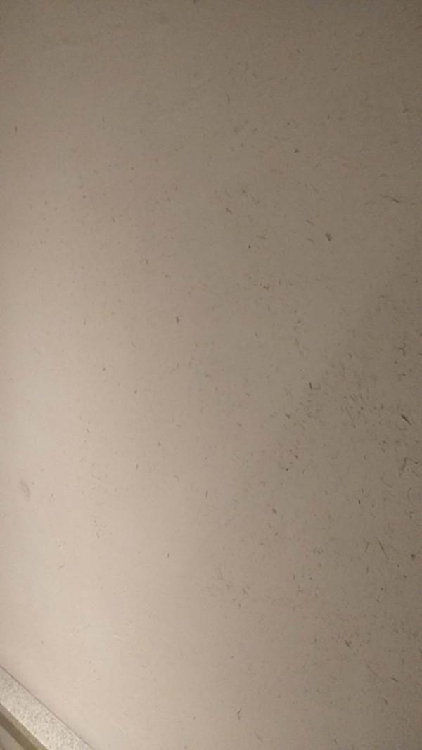 生态稻草漆与黄泥墙的优缺点,稻草漆的施工方